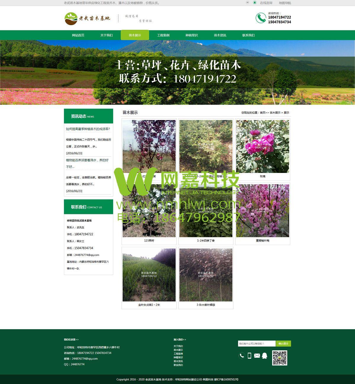 绿化苗木网站建设